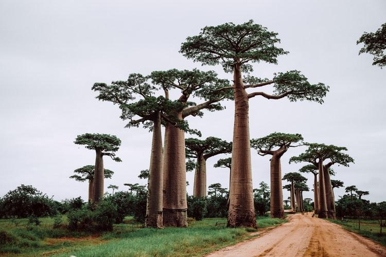 pays sans visa maroc Madagascar